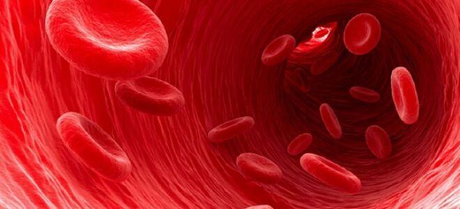Питание при густой крови