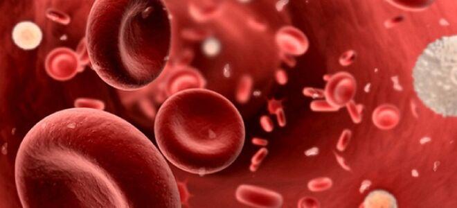 Миелобластный лейкоз