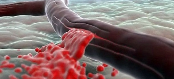 Кровоостанавливающие средства