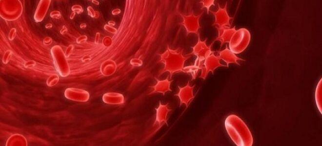 Причины рака крови