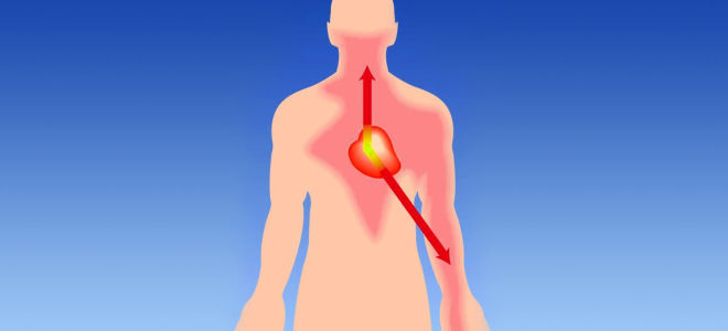 Основные симптомы и признаки стенокардии