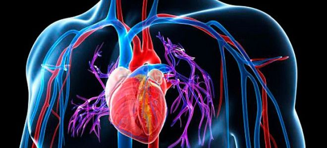 Аритмическая форма инфаркта миокарда