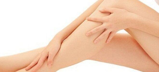 Лечение тромбофлебита нижних конечностей пиявками