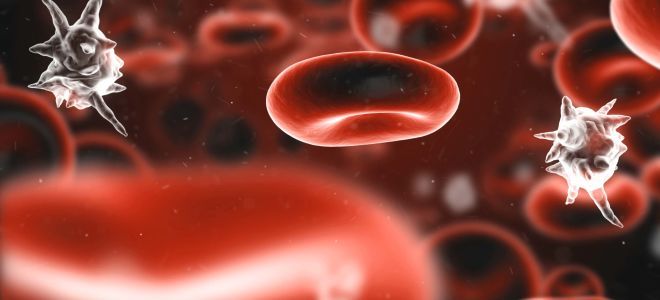Заражение крови