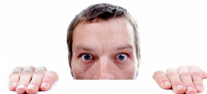 Мужские кошмары: поговорим о варикоцеле