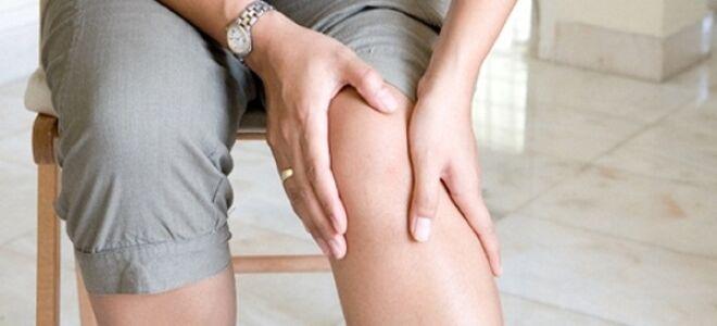 Профилактика варикоза на ногах
