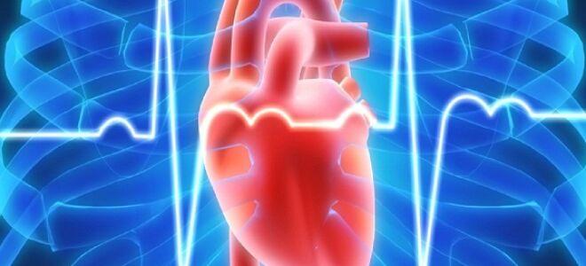 Патогенез хронической сердечной недостаточности