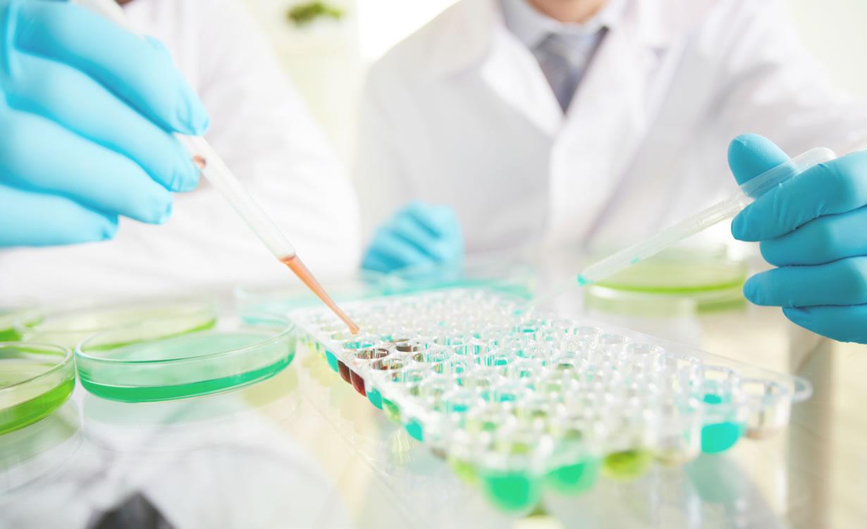 Биохимическое исследование