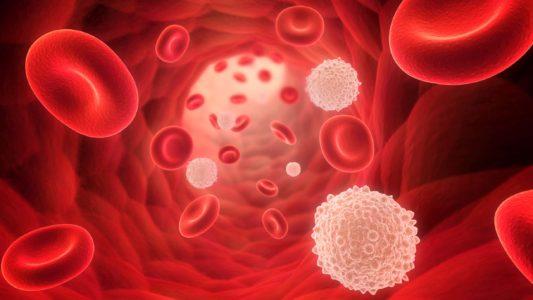 Заражение крови основные симптомы сепсиса