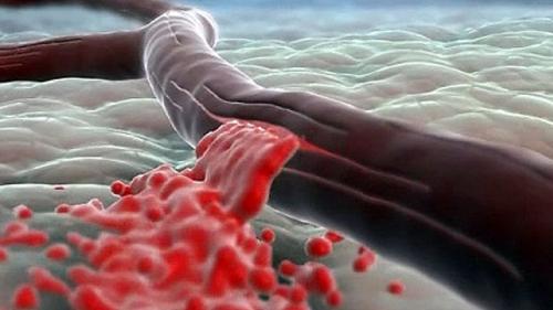 Кровоостанавливающие таблетки при кровотечении