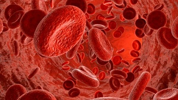тромбоцитопения миниатюра