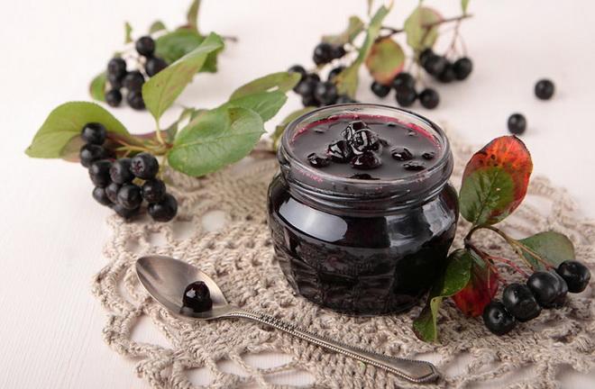 Польза черноплодной рябины