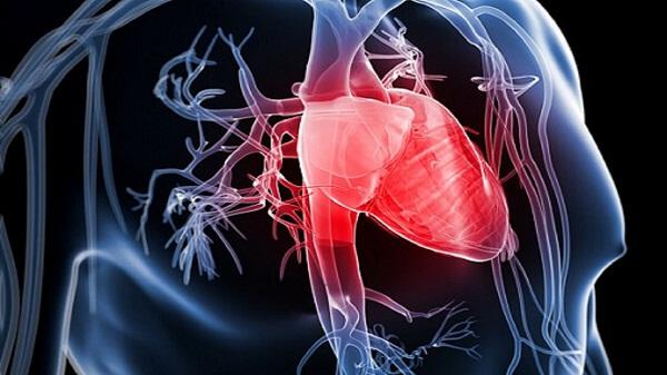 Сердечно коронарная недостаточность ⋆ Лечение Сердца