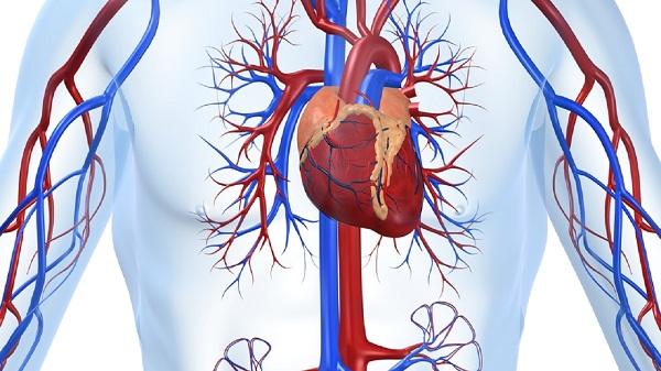 ишемическая болезнь сердца миниатюра