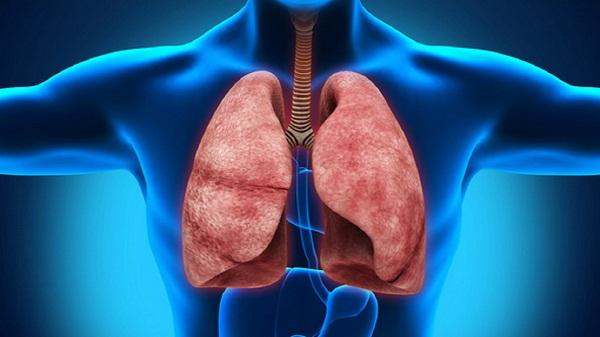 Стеноз легочной артерии: классификация, лечение и профилактика