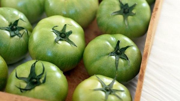 Зеленые помидоры от варикоза: отзывы о лечении варикозного расширения вен
