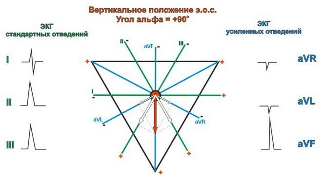 Вертикальное положение ЭОС