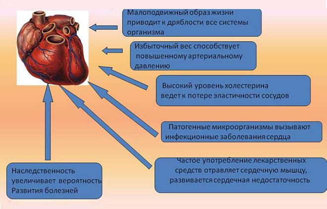 Факторы, негативно влияющие на сердечно-сосудистую систему