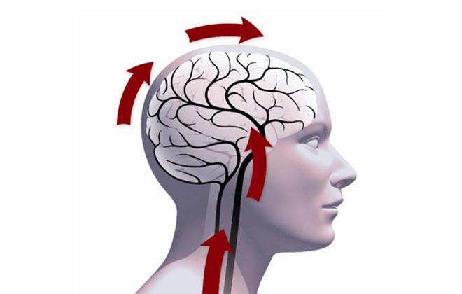 Энцефалопатия головного мозга причины