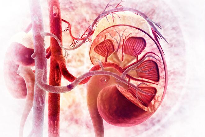 Причины почечного кровотечения