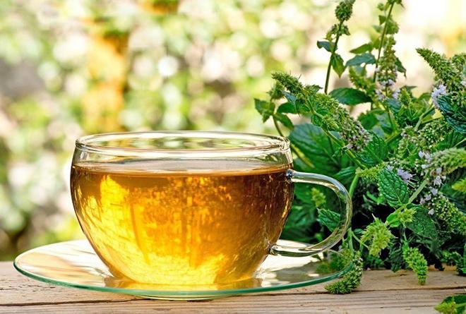 Чай из мелиссы от атеросклероза